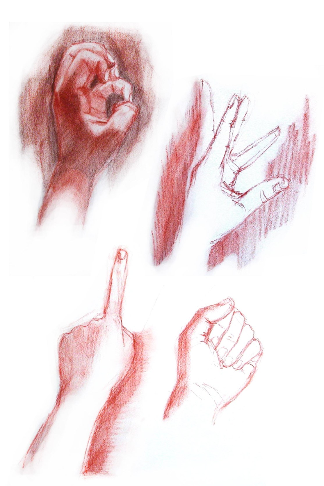 05_life drawing